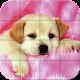 Puzzle - Puppies (game)