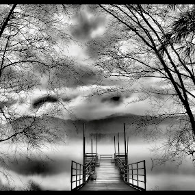 Foggy Mountain Pier by Vickie Barnhill - Landscapes Weather ( mountains, b&w, fog, pier )