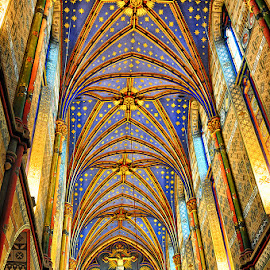 Cathedral  by Stanley P. - Buildings & Architecture Places of Worship (  )