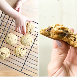 Chocolate Chip Oatmeal Raisin Cookies with Go & Grow by Similac® Food Mix-Ins™