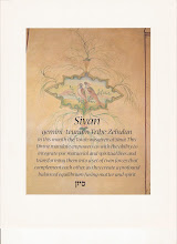 "Photo: R. Simon Jacobson wrote: ""SIVAN Gemini – Teumim. Tribe: Zebulun In this month the Torah was given at Sinai. This Divine mandate empowers us with the ability to integrate put material and spiritual lives, and transforming them into a set of twin forces that complement each other, as they create a profound balanced equilibrium fusing matter and spirit."""