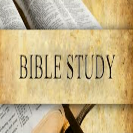 Bible Study Commentary Volume 1