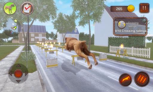 Boxer Dog Simulator apktram screenshots 4