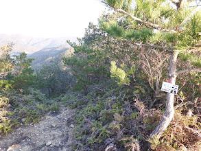 浅間山(左下に登山道)