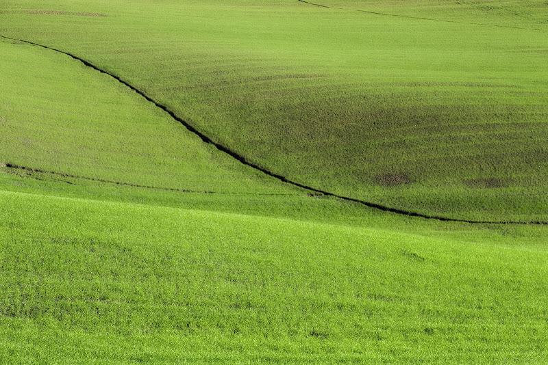 Onde verdi di Gloria Staffa