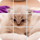 Shuffle Puzzle - Cats
