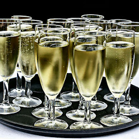 Cheers by Sue Bernhard - Smith - Food & Drink Alcohol & Drinks ( champagne, alcohol, drinks,  )