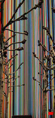 Linee colorate di PaoloPalazzi