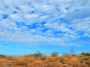 Photo: clouds above grasses and scrub on Pha Taem