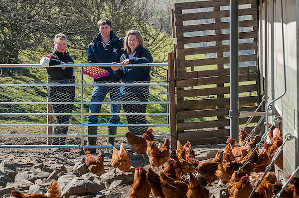 Aled grows agri egg business following investment
