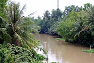 Photo: Year 2 Day 29 - Mekong Delta Scenery Now #2