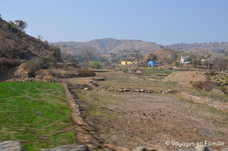 Rizières Kumbhalgarh