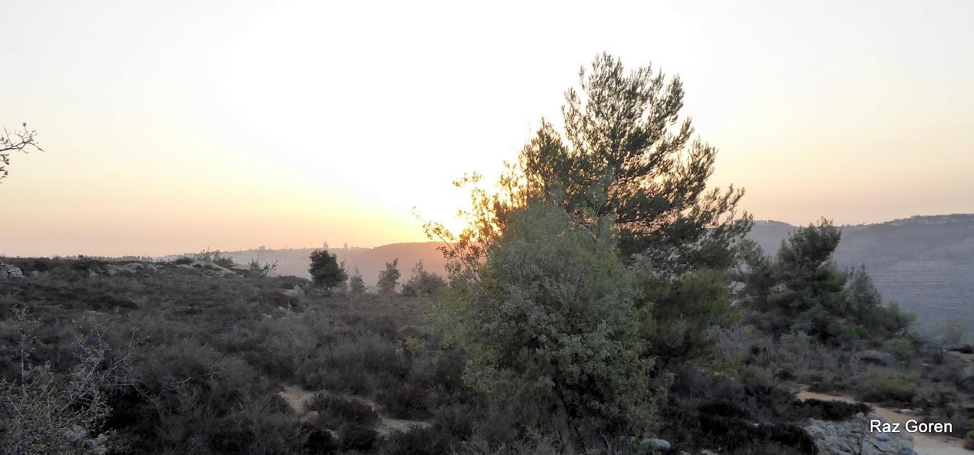 זריחה מעל ירושלים , מבט מבור לוזים