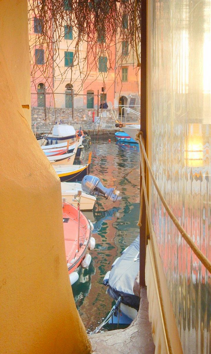 acquarello camogliese di provenza