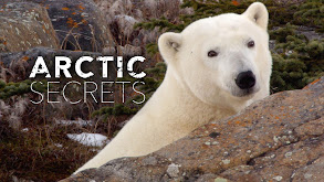 Arctic Secrets thumbnail