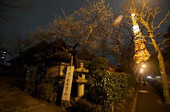 Photo: Zojoji at night