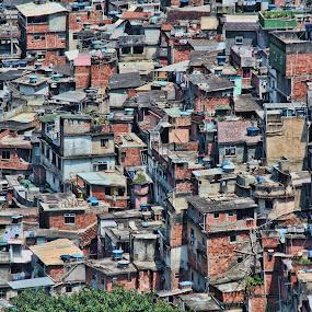 Clustered by Kim Wilson - City,  Street & Park  Neighborhoods ( rocinha, slum, detail, rio de janeiro, exterior, makeshift, landscape, shantytown, shacks, brazil, overlook, favela, overview, poverty, horizontal, vista, outdoors, cluster, day, homes, outside )