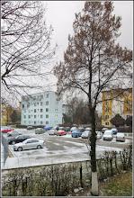 Photo: Teiul de la geamul meu  - Calea Victoriei, B15 -  2018.02.26