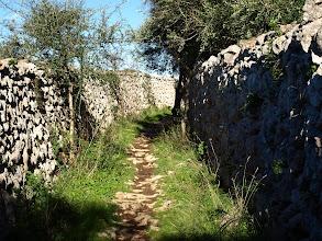Photo: Camí de Biniatí prop de Llucmaçanes
