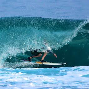 Barrel by Julie Steele - Sports & Fitness Surfing