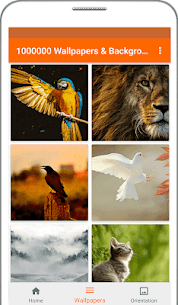 1000000 Wallpapers & Backgrounds v3.3 [Ad Free] APK 4