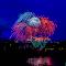 8276 jpg Firework July-18-16.jpg