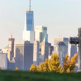New York skyline  by Aurelio Firmo - City,  Street & Park  Skylines ( wtc, skyline, new york, cemetery )