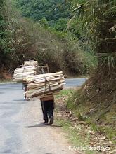 Photo: Enfant d'environs 8 ans portant le bois Luang Nam Tha Mai 2012