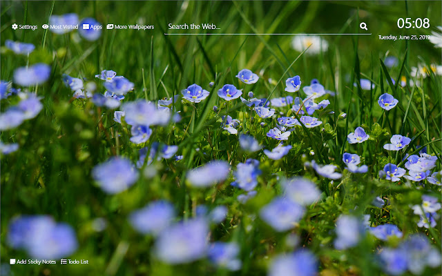 Wild Flowers Wallpaper HD New Tab Theme©