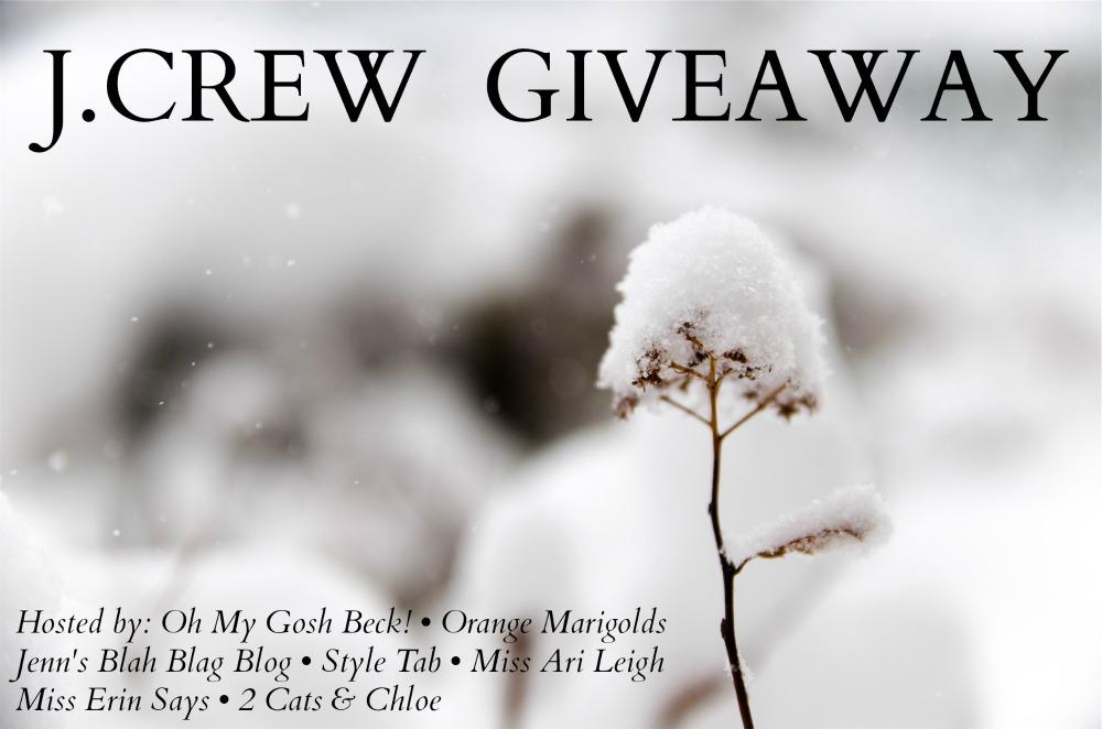 JCrew Giveaway 2015.jpg
