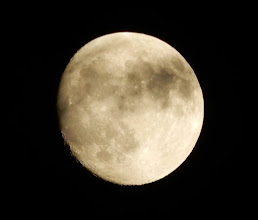 Photo: 今宵の月、十四夜月。