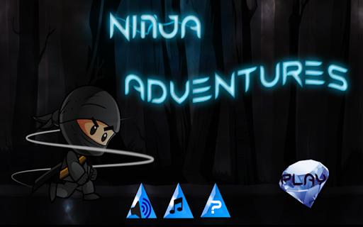 Adventures Ninja