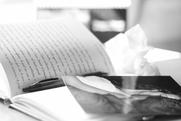 Diario del primo amore... di Primiera