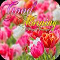 Good Morning 7 Day Image APK