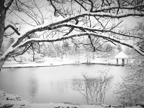 Photo: Black and white photo of a quiet snowy day at a pond and gazebo at Cox Arboretum in Dayton, Ohio.