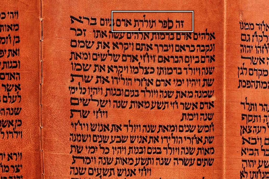 """Torah Scroll with Genesis 5:1 (""""the book of the generations of Adam"""")"""