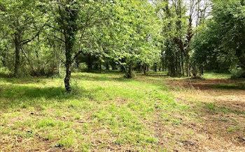 terrain à Mauzac-et-Grand-Castang (24)