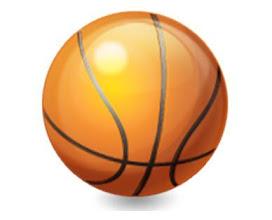 Photo: Basketbalový tým ve školním roce 2010/2011.