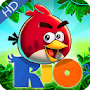 angry HD wallaper for bird APK icon