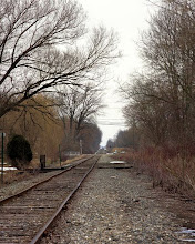Photo: rural railroad crossing extended view