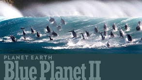 Planet Earth: Blue Planet II thumbnail