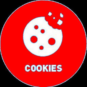 Cookie Manager for System Web View