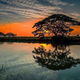 by Galaxi Man - Landscapes Sunsets & Sunrises (  )