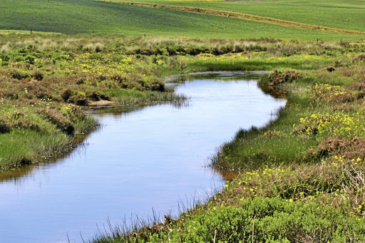 A river in the Cape Overberg. Picture: SUPPLIED