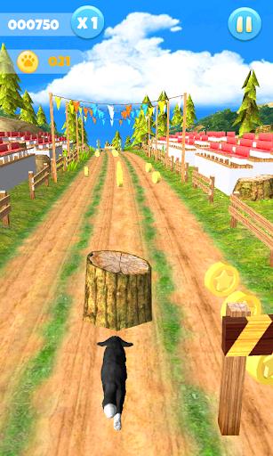 Dog Run 1.1.0 screenshots 2