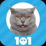 101 Pics: Photo Quiz Icon