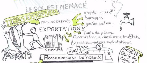 facilitation graphique terres nourricieres
