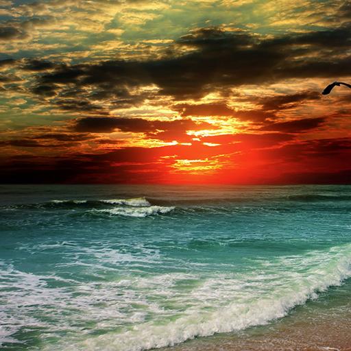 美丽的大自然壁纸 個人化 App LOGO-硬是要APP
