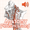Anatomy Pronunciations icon