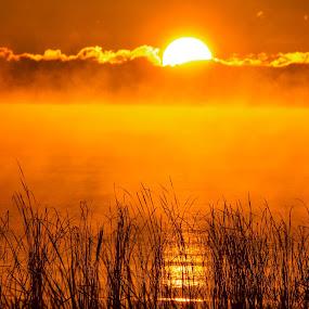good morning by Sunil Pawar - Landscapes Sunsets & Sunrises ( clouds, reflection, beautiful, lake, travel, morning, sun, sky, nature, fog, summer, golden, mist,  )
